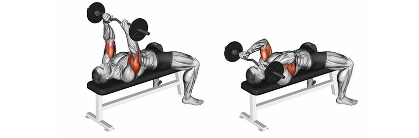 trainen triceps